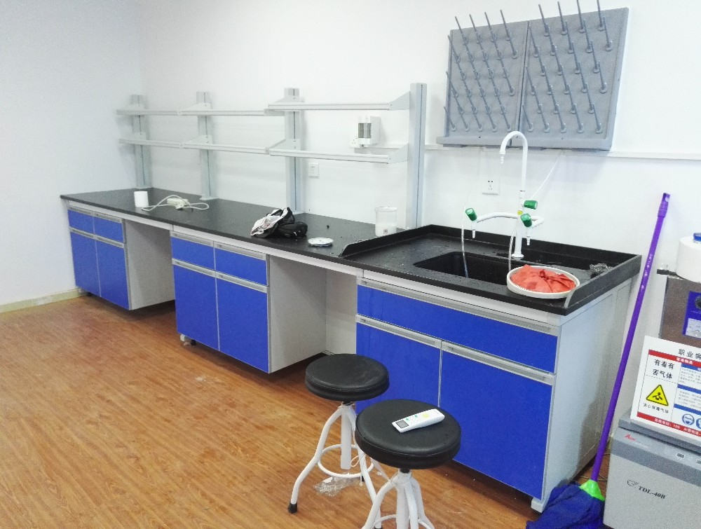 Laboratory companion Lateral lab workbench lab wall table with metal structure and sink
