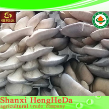 fashion china online shopping mushroom in vinegar