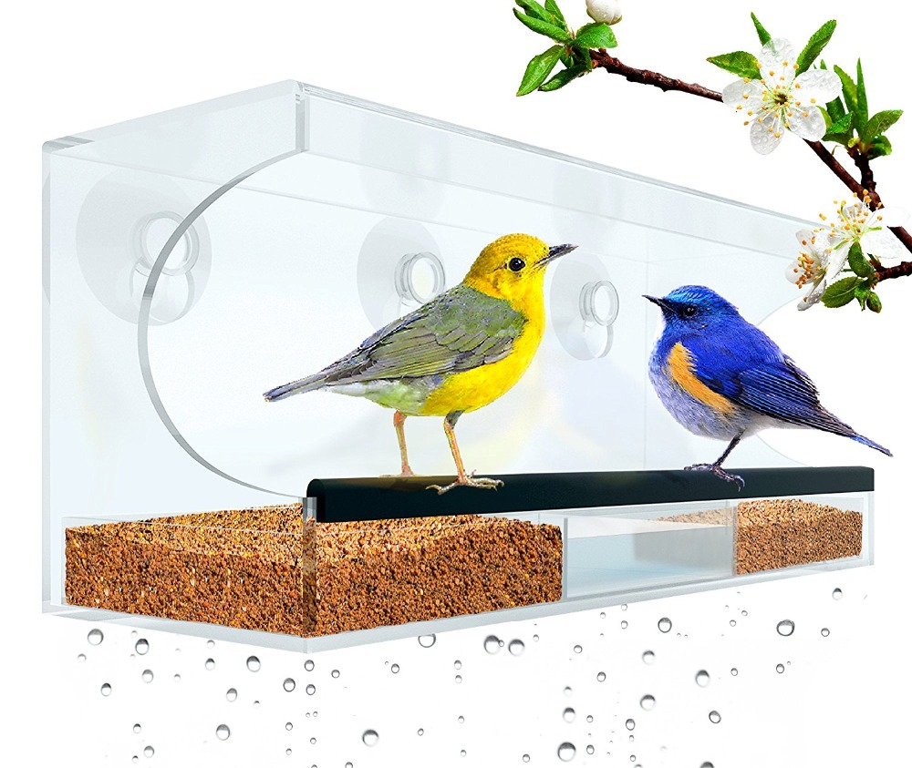 High quality Power Suction Cups and drain acrylic window bird feeder
