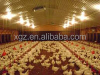 poultry chicken farm building house