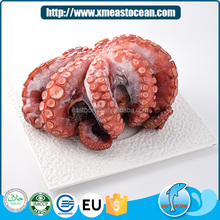 New products frozen seafood whole cleaned live octopus