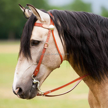 Western red PVC endurance horse bridle