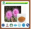 GMP factory supply herb organic Rhaponticum extract powder