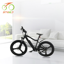 Latest model easy ride 36v lithium battery 250w e-bicycle mountain electric bicycle