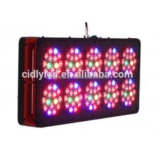Grow Tomatoes indoor with 400w fruiting LED grow lights Super 400w LED Tomato Grow Light
