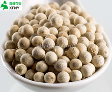 good quality white pepper from China