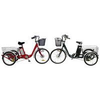250W lithium battery cargo pedal basket electric tricycle for adult