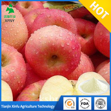 food spray dry dried apple powder