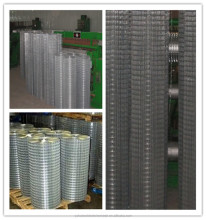 "Galvanized Welded Wire Mesh1/2"" 1/4"" 3/4"" 8/3"" wire mesh"