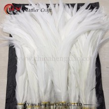 Factory Wholesale Cheap Bleached White Cock Rooster Tail Feathers For sale cheap