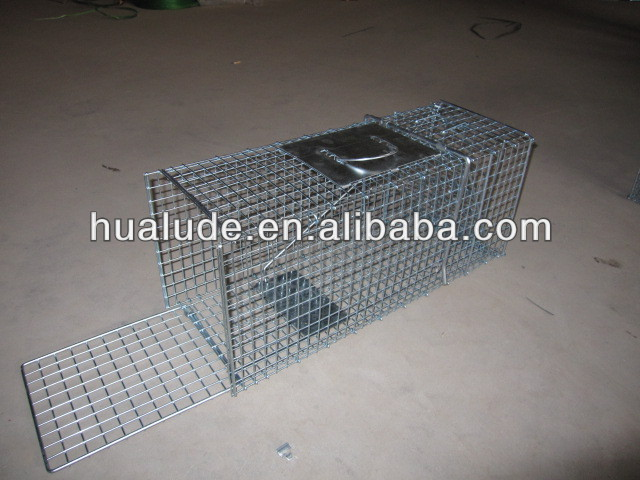 wire folding cage mouse trap sale with best quality