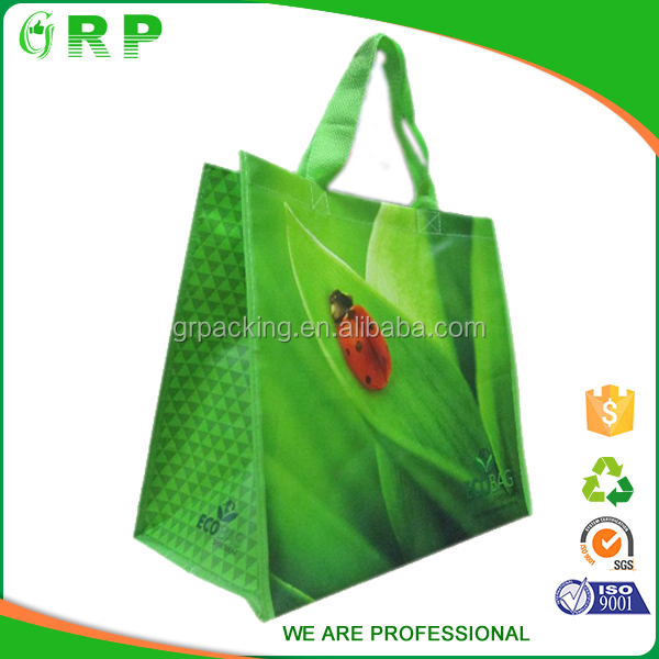 Best selling collapsible green apple fruit pattern pp woven shopping bag
