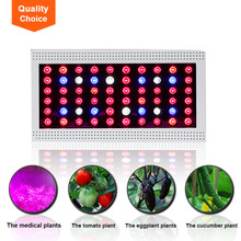 Vegetable seeds grow fast 5W Chip LED plant light lamp