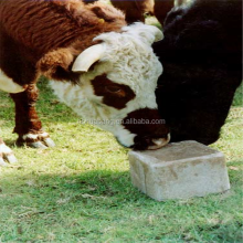 HBXS Natural Animal Feed cattle mineral mixture Salt Licks blocks