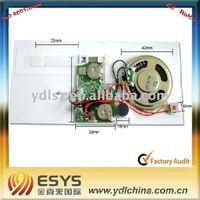 voice chip sound activated for greeting card, toys, gifts
