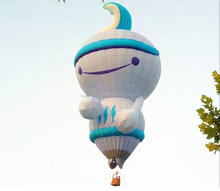 Lovely giant hot air balloon price