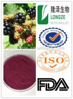ISO KOSHER 100% Natural plant extract blackberry