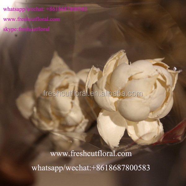 Freshcutfloral Is Alibaba Best Wholesale Artificial Dried Hydrangeas To Buy For Wedding Bouquet Ideas Supply The Highest Quality