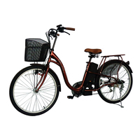 The Newest Girl Cycle Sunny Powerful E- Bike