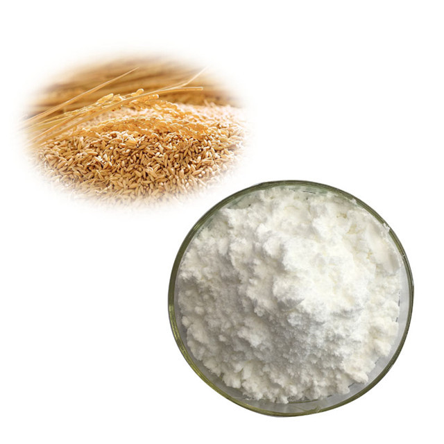 Wholesale ISO Certificate Cosmetic Garde Ceramide Powder Manufacturer