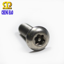 Security Pan 6-Lobe Head Anti-theft Screw