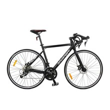 48V 18 speeds invisible battery electric road bike