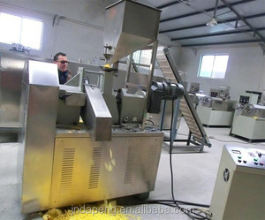 Jinan Eagle corn Cheetos/kurkure/Nik naks chips food making equipment machine manufacture