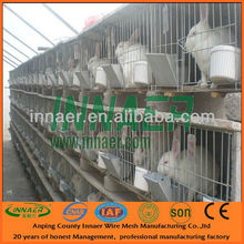 Poultry equipment folding rabbit cage(Factory price)