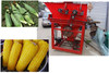 hot sale farm corn skin peeling machine