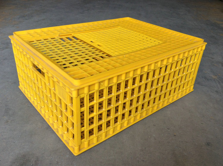 HDPE plastic chicken transport box