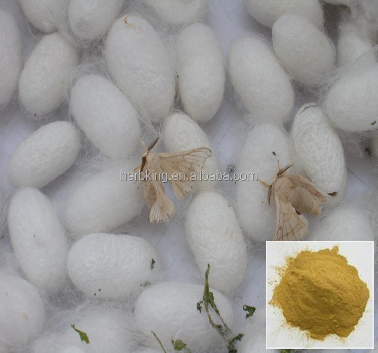 Sex Pills Material Male Silk Moth Extract 10:1 Powder free sample