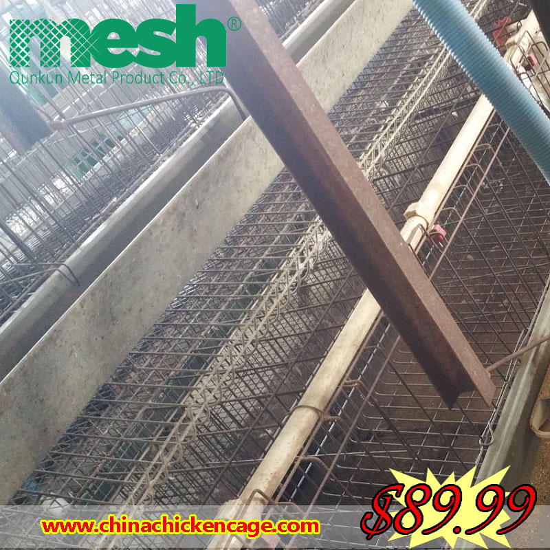 New technology layer farm broiler rearing cage