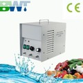 water cleaner water purifier 5g/h ozone generator