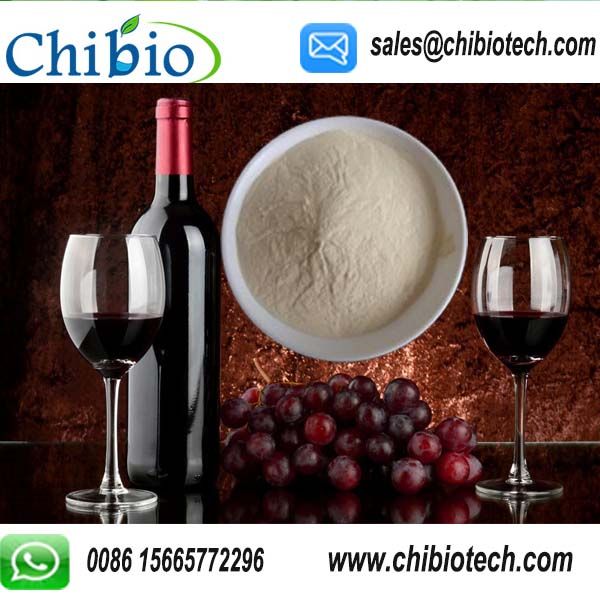GMP Factory Supply Aspergillus Niger Chitosan