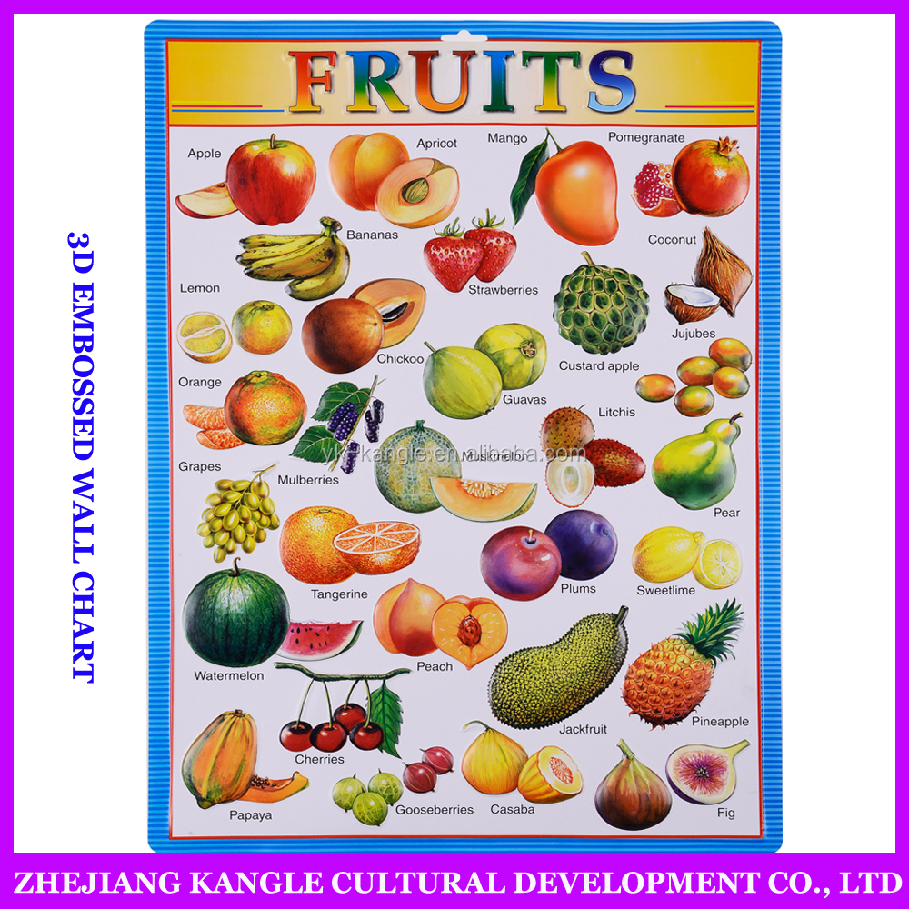 High quality factory price learning wall chart / different vegetables chart