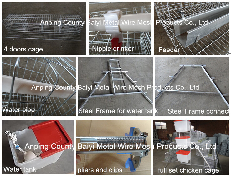 Layer Poultry Chicken Cages For Kenya Farms With Automatic Water System