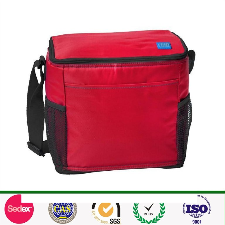 promotional outdoor cans thermal lunch polyester mesh cooler bag