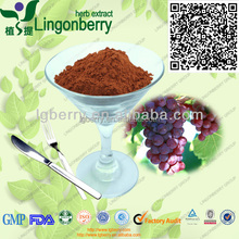 100% Natural Grape Juice Powder/Grape seed extract, Daxinganling GMP Factory Supply