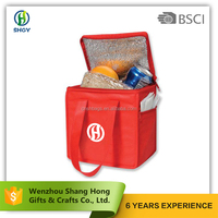 BSCI Promotional Wholesale Customized Wine Bottle Non Woven Ice Thermal Lunch Insulated Cooler Bag for Frozen Food