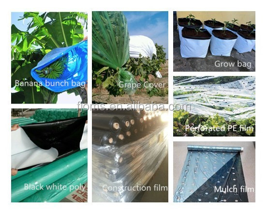 Agricultural black plastic poly mulch film with perforated holes
