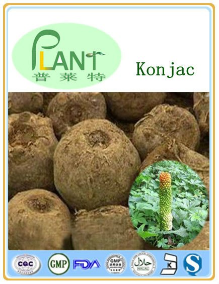 Top quality konjac root fiber powder