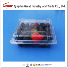 2017 the most influential Disposable Fruit Food Container packing tray