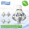 2013 Hot Selling Shower Filters L-SF301 Shower head