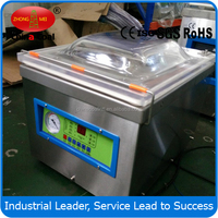DZ250 small vacuum packing machine food sealer machine with CE
