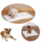 2019 popular pet products puppy training pads
