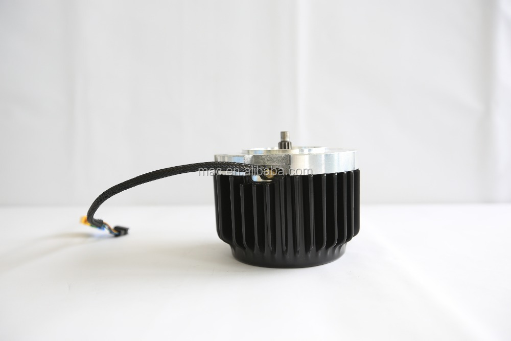 Home use 24V 36V 48V 600W small car motor