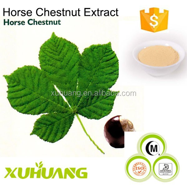 Manufacturer Supply The Lowest Price and The Top Quality Horse Chestnut Extract