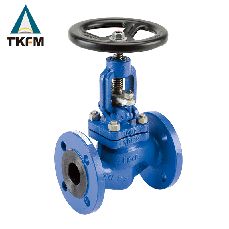 TKFM bellows seal sw bronze gate valve globe valve 5k dn15 dn20 dn25 dn40
