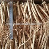 renshen new crop 100% hot herb high quality dried ginseng root
