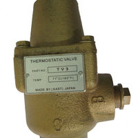 Maximize Energy Savings Thermostat Valve With